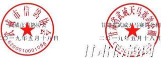 武威天马赛鸽公棚2020年春季第七届