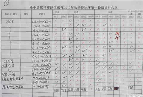 榆中县翼祥赛鸽俱乐部2019秋季特比环第一轮暗插清